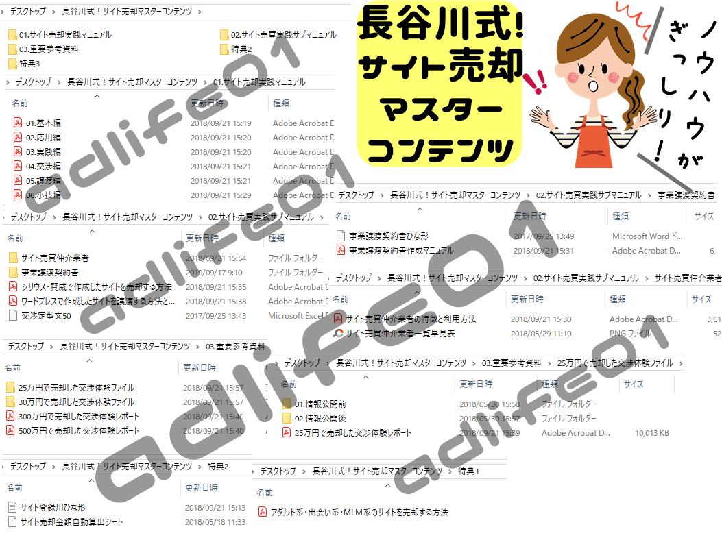 長谷川式!サイト売却マスターコンテンツ